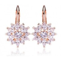 Earrings with Zircon Stone